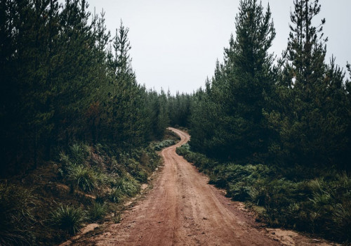 Wat maakt Geocoaching zo leuk?
